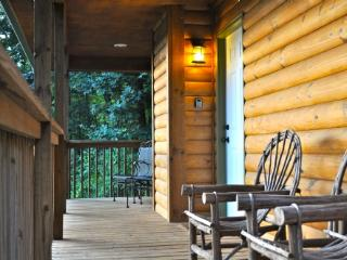 Rainbow Ridge- Easy Access: Blue Ridge Pkwy, Hickory Nut Gorge;Tastefully Decorated Log Cabin - Hendersonville vacation rentals