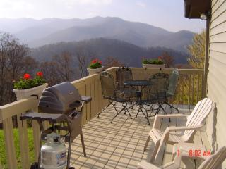Eagle's Landing- Use Your 4x4 to Climb & Refresh Your Spirit, A Mountain Retreat w/Incredible VIEWS! - Woodfin vacation rentals