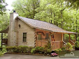 Dove's Nest   Private Mtn View  Hot Tub  WiFi  Jetted Tub  Free Nights - Gatlinburg vacation rentals