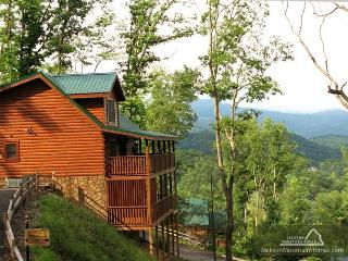 Komfy Kozy   Mountain View  Game Room  Pool Access  WiFi   Free Nights - Gatlinburg vacation rentals