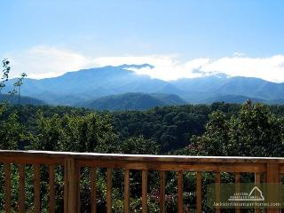 LeConte Landing  Gaming Near Ober Ski Resort Mtn View Pets Free Nights - Gatlinburg vacation rentals