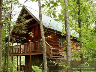 Running Bear   Hot Tub Private Views Fireplace Pool Table  Free Nights - Gatlinburg vacation rentals