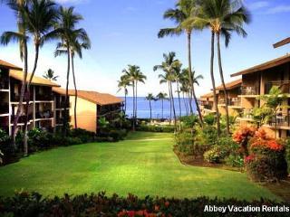 Lovely Condo in Kailua-Kona (Nice 1 BR/1 BA Condo in Kailua-Kona (K3-KM 4-104)) - Kailua-Kona vacation rentals