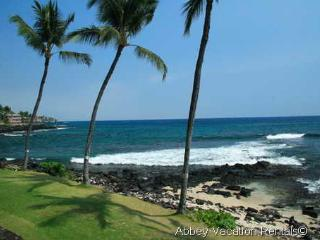Kailua-Kona 1 Bedroom & 1 Bathroom Condo (K3-KR A16) - Waikoloa vacation rentals