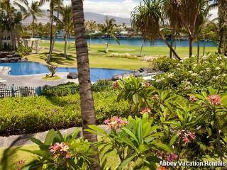 Picturesque Condo in Waikoloa (W3-FV L21) - Waikoloa vacation rentals