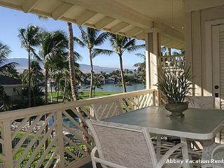Wonderful 2 BR-2 BA Condo in Waikoloa (W5-FV L32) - Waikoloa vacation rentals