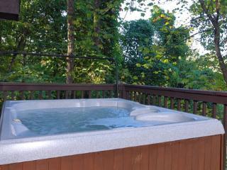 Aarons Lodge - Gatlinburg vacation rentals