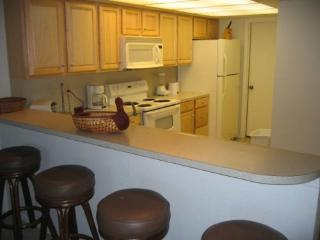 Charming Condo with 2 Bedroom-2 Bathroom in South Padre Island (Summit - Unit 403) - South Padre Island vacation rentals