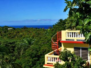 Amapola House Beach Area Villa - Pool Roof Spa Tub - Rincon vacation rentals