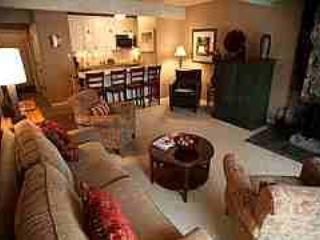 Beautiful 2 Bedroom, 2 Bathroom Condo in Aspen (Lift One - 203 - 2B/2B) - Image 1 - Aspen - rentals