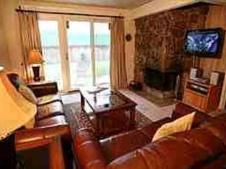 Beautiful Condo with 2 BR & 2 BA in Aspen (Perfect Condo in Aspen (Lift One - 207 - 2B/2B)) - Image 1 - Aspen - rentals
