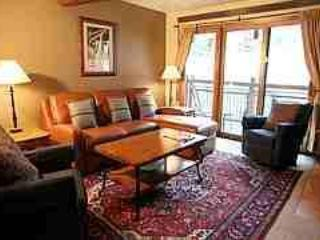 Amazing 2 Bedroom & 2 Bathroom Condo in Aspen (Lift One - 307 - 2B/2B) - Image 1 - Aspen - rentals