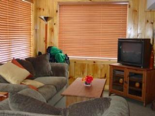 222 - Laconia vacation rentals