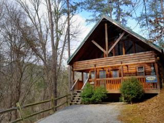 Making More Memories - Gatlinburg vacation rentals
