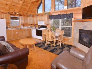 The Vinson - Gatlinburg vacation rentals