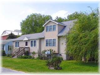 One Pine Island - Image 1 - Chincoteague Island - rentals