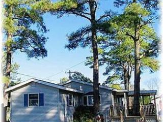 Pine Haven - Image 1 - Chincoteague Island - rentals