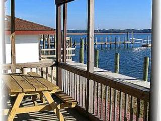 Sea Tag #14 - Image 1 - Chincoteague Island - rentals