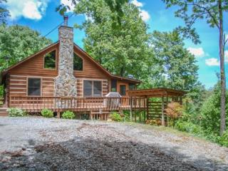 BARE-N-THE-WOODS- 2BR/2.5 BA- TRUE LOG CABIN WITH AWESOME VIEWS OF LAKE BLUE RIDGE AND THE BLUE RIDGE MOUNTAINS, WiFi, GAS AND C - Blue Ridge vacation rentals