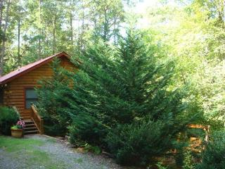 BEAR HUG CABIN- 2BR/1BA- CABIN SLEEPS 4, LOCATED WITHIN WALKING DISTANCE OF CHERRY LAKE AND THE BENTON MACKAY TRAIL! 14FT MAD RI - Blue Ridge vacation rentals