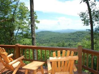 CABIN SWEET CABIN- 2BR/2BA- BREATHTAKING MOUNTAIN VIEW CABIN SLEEPS 6, SAT TV, GAS LOG FIREPLACE, AND A HOT TUB! ONLY $110 A NIGHT! - Blue Ridge vacation rentals