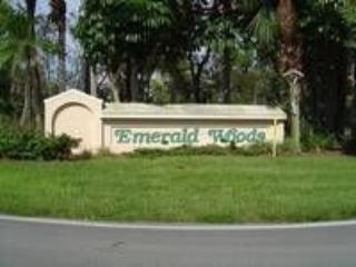 Emerald Woods - Emerald Woods - Naples - rentals