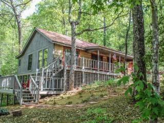 FOREST MOUNTAIN OUTFITTERS*4 WHEEL DRIVE REQUIRED*2BR W/SLEEPING LOFT/2BA- SECLUDED CABIN SLEEPS 6, HOT TUB, BEAUTIFUL MOUNTAIN VIEW, PET FRIENDLY, SAT TV, CHARCOAL GRILL, WOOD BURNING STOVE! ONLY $99/NIGHT! - Blue Ridge vacation rentals