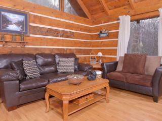 Auntie Sue's Cabin - Gatlinburg vacation rentals