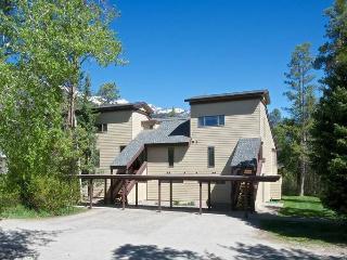 Super Condo in Wilson (1bd/1ba Bearberry 3412) - Wilson vacation rentals