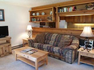 1bd/1ba Buckwheat 1814 - Teton Village vacation rentals
