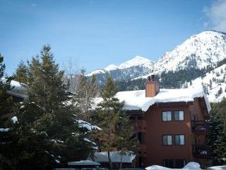 2bd/2ba Sleeping Indian E 5 - Teton Village vacation rentals