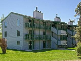 2br/1ba Spruces #8 - Wyoming vacation rentals