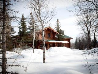 4.5bd/4ba Macker's Cabin - Wilson vacation rentals