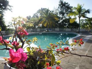 Deluxe  2 or 3 bedrm Ocho Rios Seaview Condominium - Ocho Rios vacation rentals