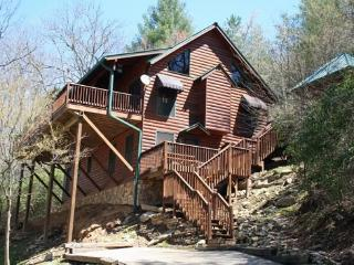TOCCOA FISH TALES- 3BR/2BA CABIN ON THE TOCCOA RIVER TAILWATERS, WALKING DISTANCE TO TOCCOA RIVER RESORT,HOT TUB, FOOSBALL, GRILL, WIFI, JETTED TUB, NOT TO MENTION EXCELLENT FISHING! ONLY $200/NIGHT! - Blue Ridge vacation rentals