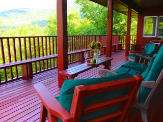 Best Fall views in Vermont! Fireplace, deck, ski - Manchester vacation rentals