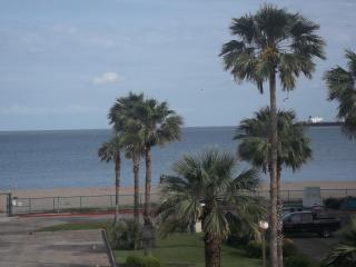 Corpus Christi Condo on the Beach! - Corpus Christi vacation rentals