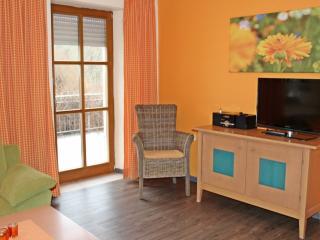 Vacation Apartment in Volkach - 700 sqft, great location, comfortable (# 2677) - Schweinfurt vacation rentals