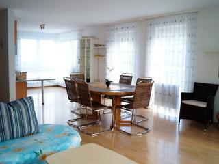 Vacation Apartment in Friedrichshafen - 926 sqft, comfortable, relaxing, warm (# 2716) - Tettnang vacation rentals