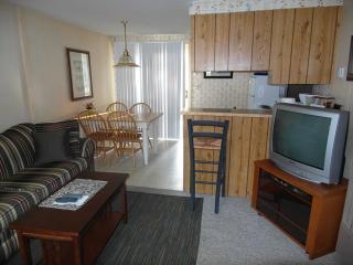 Surf Side #10 Fairway - Oscoda vacation rentals