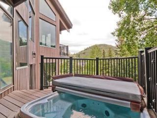 Gorgeous Deer Valley 3+ Bedroom Pinnacle with Great Views & Amenities - Park City vacation rentals