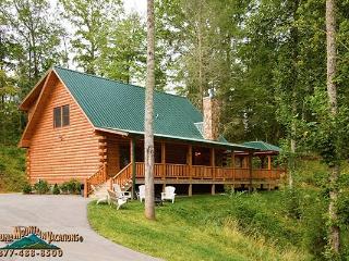 Bear's Way Log Cabin - Bryson City vacation rentals
