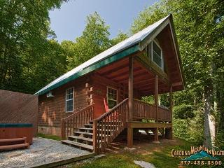 Good Life Cabin 1 - Bryson City vacation rentals