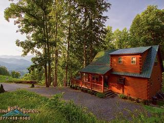 Little Bear Chalet - Bryson City vacation rentals