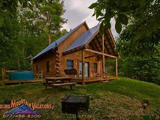 Mountain Hideaway log cabin - Bryson City vacation rentals