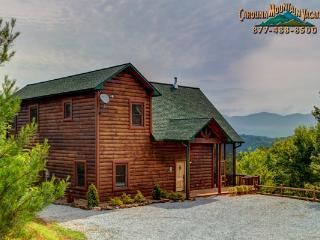 Pine Meadow Lodge - Bryson City vacation rentals