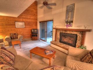 202 Burgess Creek - Mountain Area - Steamboat Springs vacation rentals