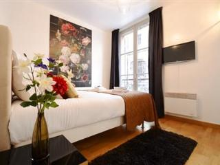 Museum view - 305 - Paris vacation rentals