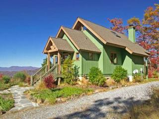 Bear Necessities - Sylva vacation rentals