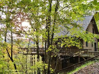 Wesser Heights Cabin - Fontana Dam vacation rentals